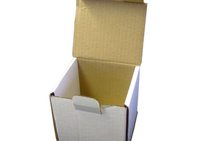 Smash Proof Box